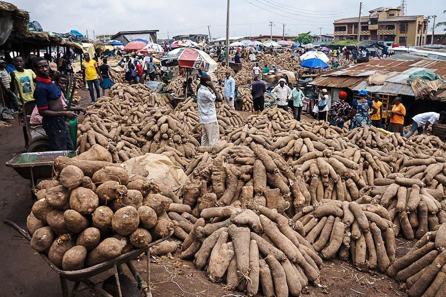 Court sentences vendor to 12 strokes of cane for stealing yams