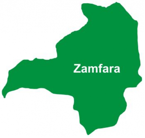 Zamfara abduction: Police confirm 317 female students missing
