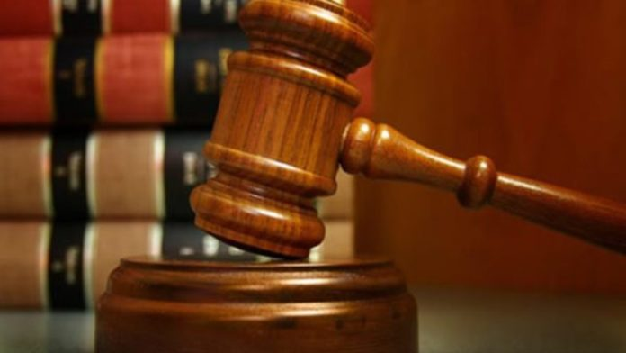 Court sentences student to 6 months imprisonment for stealing dogs