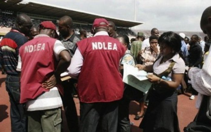 NDLEA confiscates oNDLEA seizes N10bn heroin, Khat at Lagos, Kano airportsver N17m worth of illicit drugs