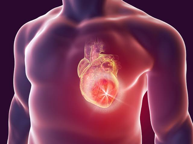 Heart needs proper nutrients and sleep to live long- Cardiologist