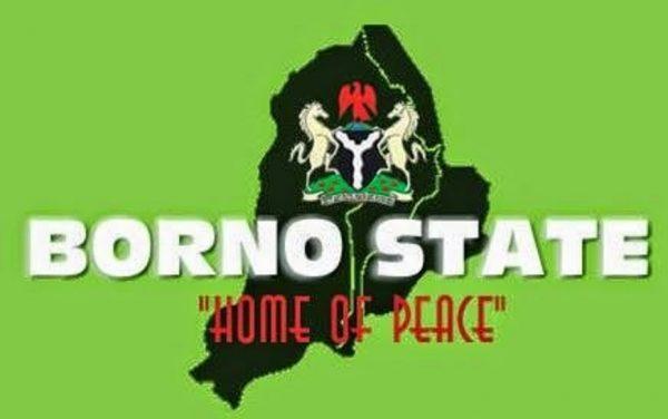 Military airstrikes destroy terrorists' hideout, kill scores in Borno