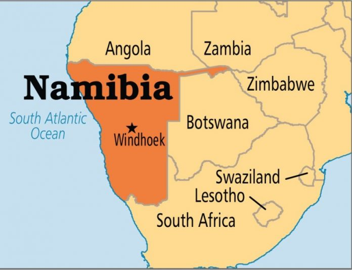 Locust outbreak destroys 700,000 hectares of land in Namibia