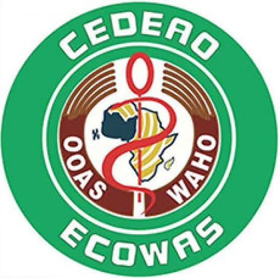 ECOWAS to send 90 observers to Niger's general elections